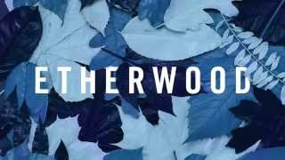 Etherwood - Under The Surface (feat. Vinny Ferraro)