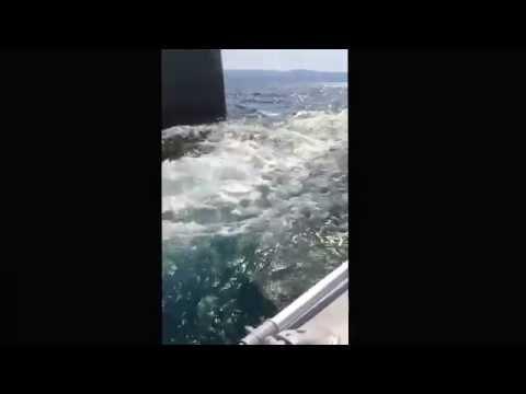 Croatia harbor jump