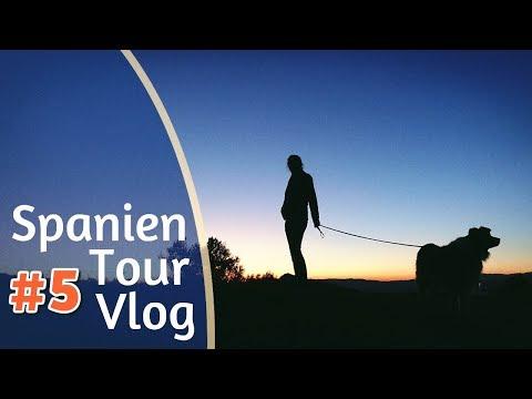 Mit Höhlenfischen und Gänsegeiern durch die Berge nach Gibraltar | Spanien Vlog #5