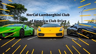 NorCal Lamborghini Club Drive