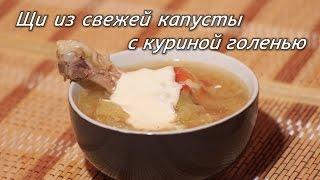 Щи из свежей капусты с куриной голенью. Рецепт супа. ПП рецепты. Рецепт борща.