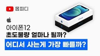 애플 아이폰12 어디서 사는게 가장 빨리 받을까요? 국…