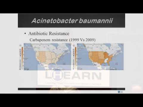 Ayush Kumar antimicrobial resistance