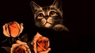 Marcial del Adalid - «El lamento» Op. 9