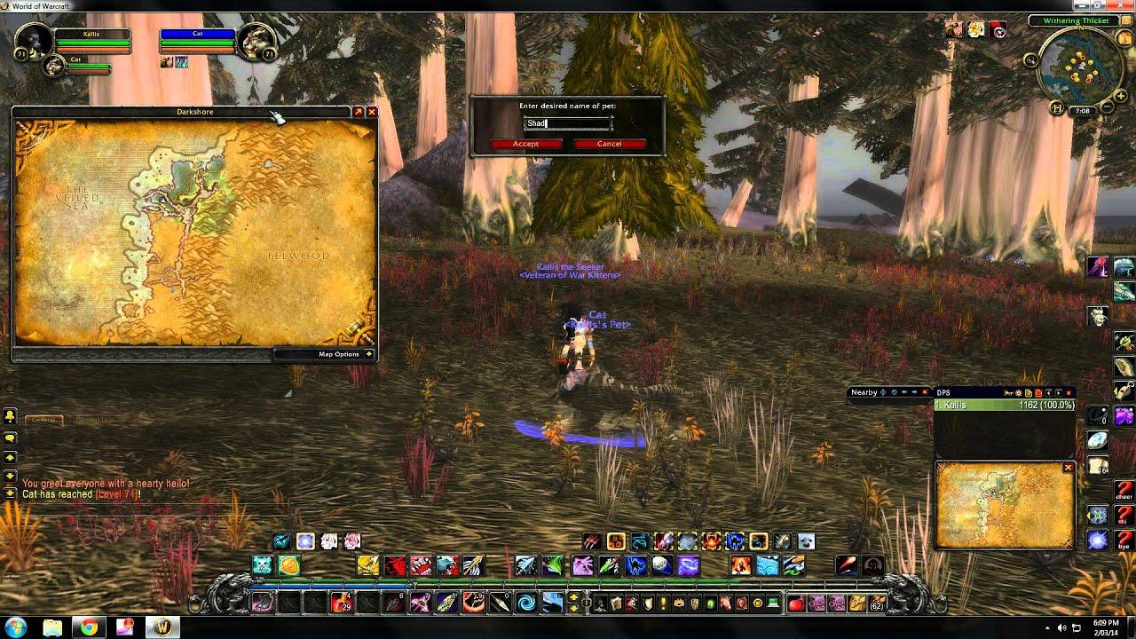 World of Warcraft rare hunter pet locations - Darkshore