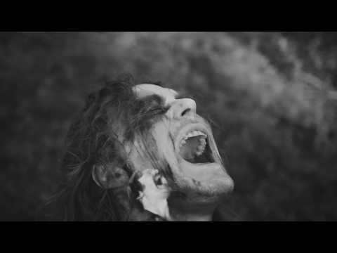 The Baboon Show - Again (Official Video)