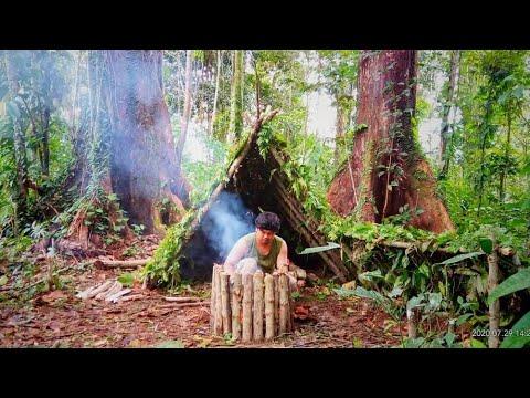 Bermalam Di Hutan Kalimantan   Membuat Shelter
