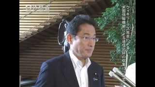 岸田外務大臣会見(平成27年8月4日)