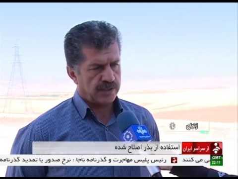Iran Zanjan province, Wheat & barley improved seeds بذر اصلاح شده گندم و جو استان زنجان ايران