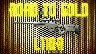 MW3: Road To Gold - (L118A)