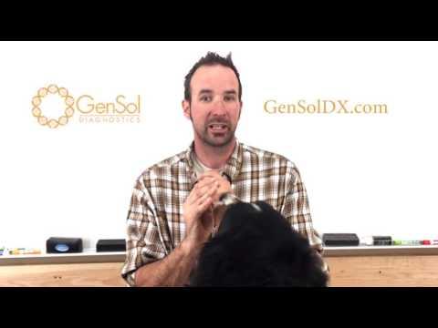 Bernese Mountain Dog Genetic Testing: SOD1A SOD1B DM VWD type1