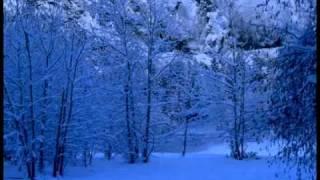 Richard Clayderman - Ave Maria ( Mi Chiquitita Bebe )