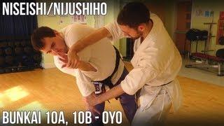 Niseishi/Nijushiho Bunkai - 10a, 10b Oyo (Awase-zuki, teisho awase-zuki)