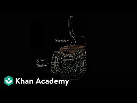 What is gastroenteritis? | Gastrointestinal system diseases | NCLEX-RN | Khan Academy