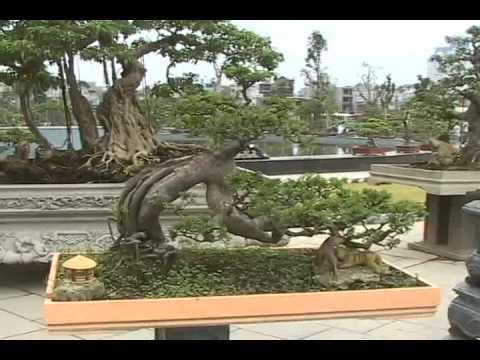 Vietbonsai.vn - Đại lễ 1000 năm Thăng Long - Hà Nội 2010
