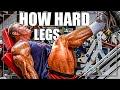 "How Hard should ""YOU"" Train (Legs)"
