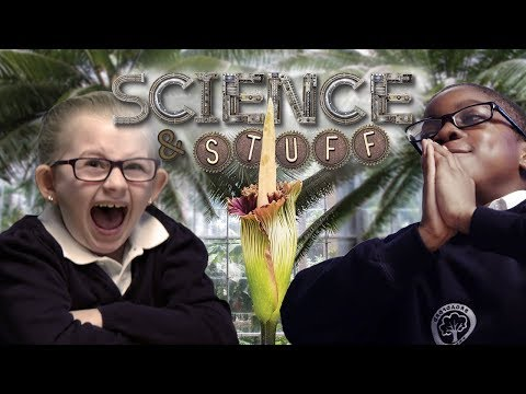 Kids react to the 'Smelliest plant' with Robin Ince - Science and Stuff