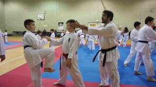 Rafael Aghayev UK Seminar - 4th February 2017 [ Juniors ]