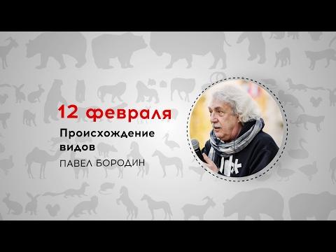 Неделя Дарвина. Павел Бородин. Происхождение видов. Трансляция