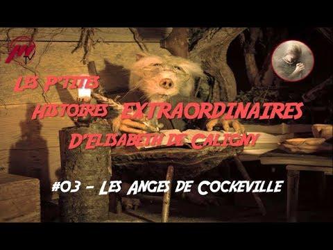 Les p'tites histoires Extraordinaires d'Elisabeth de Caligny #03  -  Les anges de Cokeville