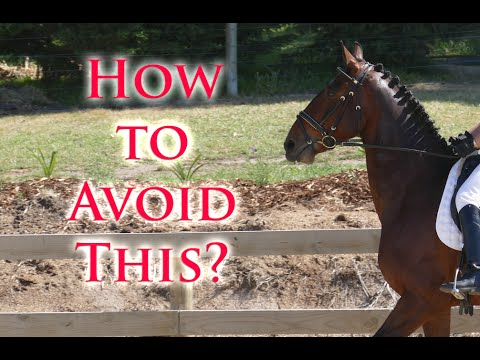 Get My Horse Forward Without the Head Lifting - Dressage Mastery TV Ep5