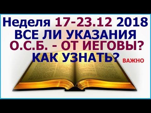 Неделя 17-23 декабря