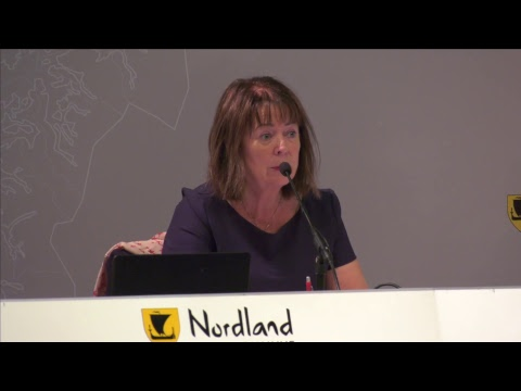 Nordland fylkesting, oktober 2017 - dag 2, del 3