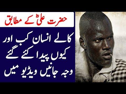 Hazrat Ali Kay Mutabiq Kalay Insan Kab or Kion Peda Kiye Gaey | Hashtag