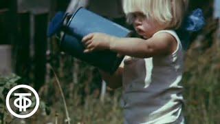 Во саду ли, в огороде... (1988)