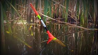 Ловля Карася и Линя на поплавочную удочку Рыбалка на Поплавок