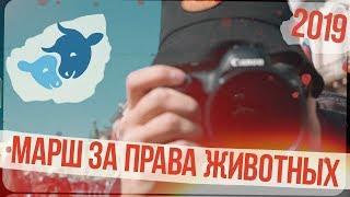 Марш за права животных | Cанкт-Петербург | 2019