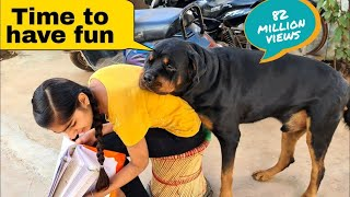 My Dog Is Trying To Irritat Anshu||funny Dog Videos.