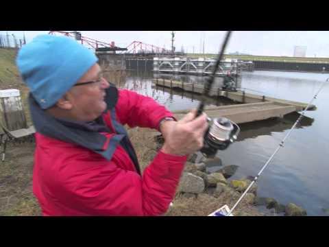 Visblad TV - Witvissen Op Zeevis