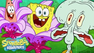 """Pineapple RV"" First 5 Minutes! 🍍🚙 New Episode Full Scene 