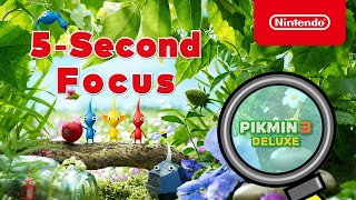 Test Your 5-Second Focus with Pikmin 3 Deluxe