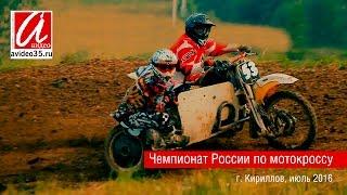 Мотокросс - июль 2016  (г. Кириллов)(Видео подготовлено ТГ