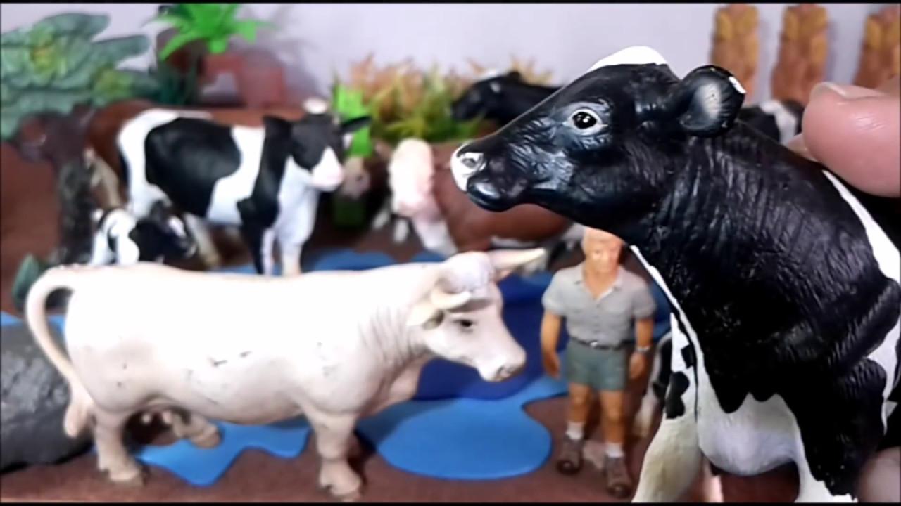 GranjaMis Y Vaquitas Animales De Farms Toros AnimalsMy Bulls A5R4j3Lq