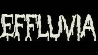 The Ultimate Brutal Death Metal/Goregrind/Porngrind Compilation Part 16