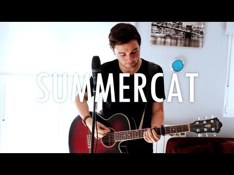 Summercat | Dani Alcedo