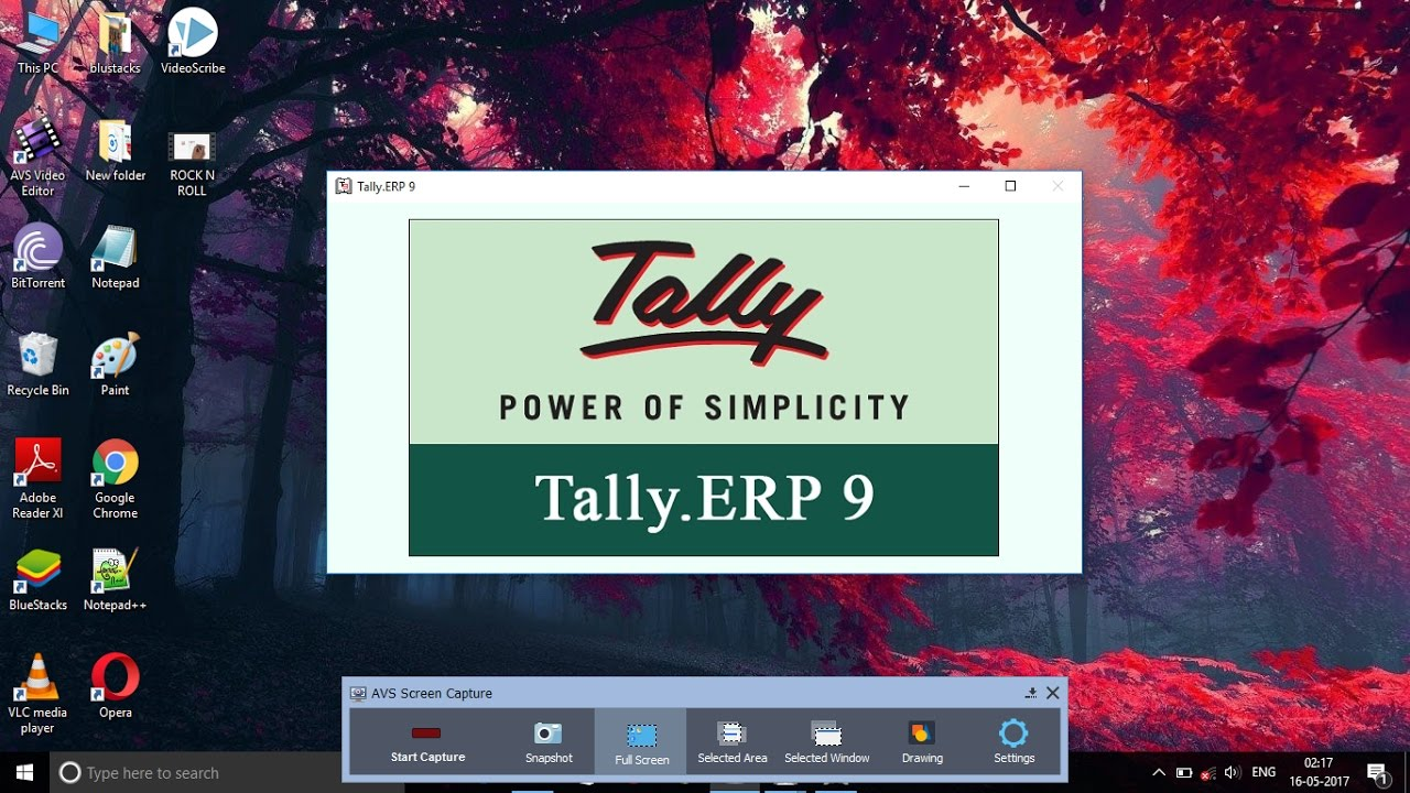 tally software download for pc