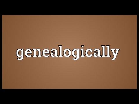 Header of genealogically