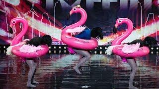 Trzech mężczyzn w rajstopach przebranych za flamingi ;) Musisz to zobaczyć! [Mam Talent]