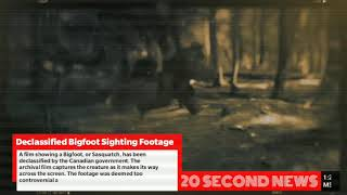 Declassified Bigfoot Sighting Footage - Breaking Pseudoscience NEWS Today
