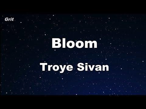 Bloom - Troye Sivan Karaoke 【With Guide Melody】 Instrumental
