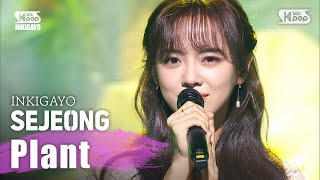SEJEONG(세정) - 화분(Plant) @인기가요 inkigayo 20200405