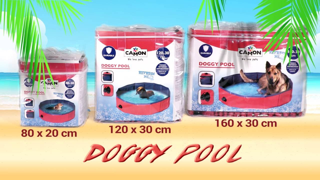 Piscina per cani Camon  YouTube