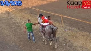 سباق الخيل العربية الأصيلة مفتوح الدرجات فجر الدين صقر العرب بريق جدعون ميدان الغريفات 2/8/2013