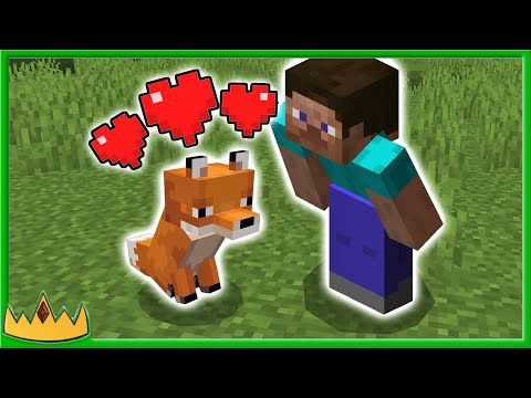 easiest-way-to-tame-a-fox-in-minecraft!
