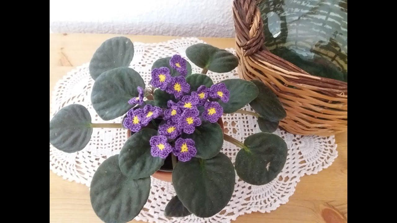 Violeta africana ( Saintpaulia ) crochet/ganchillo - YouTube