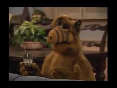 Alf cats musical